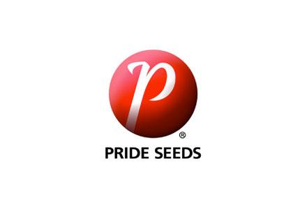Pride Seeds